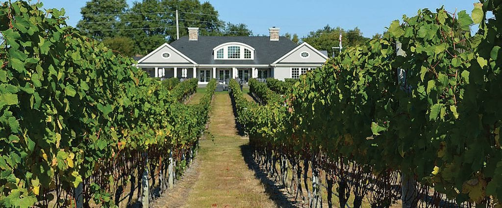 wine tours Long Island NY